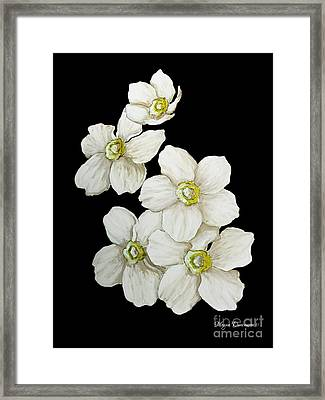 Decorative White Floral Flowers Art Original Chic Painting Madart Studios Framed Print by Megan Duncanson