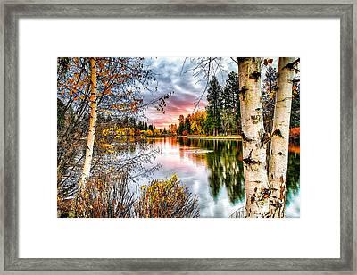 Deep Autumn Framed Print by John Williams