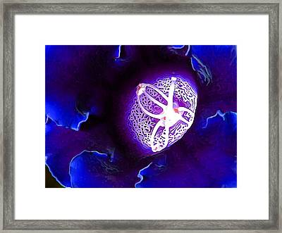 Deep Blue Framed Print by Bill Caldwell -        ABeautifulSky Photography