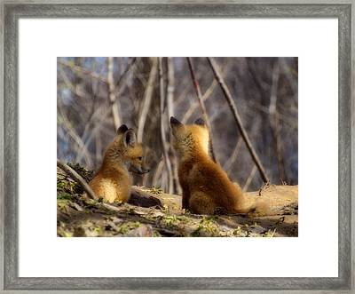 Deep In Thought 1 Framed Print by Thomas Young