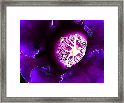 Deep Purple Framed Print by Bill Caldwell -        ABeautifulSky Photography