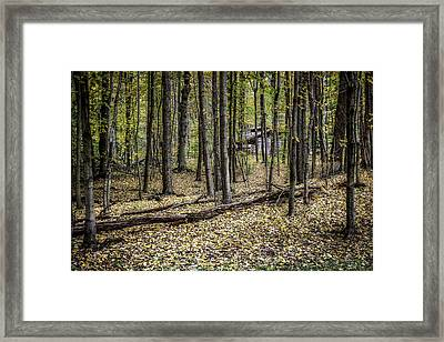 Deep Woods Cabin Framed Print by Tom Mc Nemar