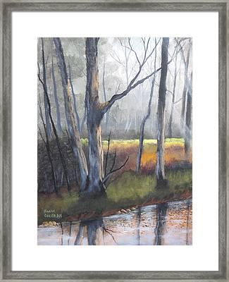 Deep Woods Framed Print by Frank Cochran