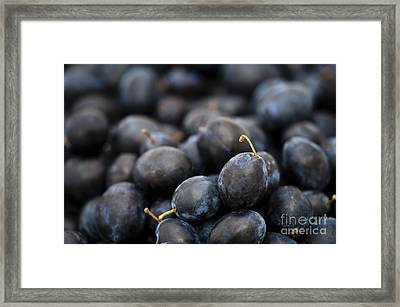 Deeply Damson Framed Print by Anne Gilbert