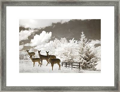 Deer Nature Winter - Surreal Nature Deer Winter Snow Landscape Framed Print by Kathy Fornal