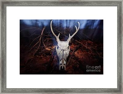 Deer Skull Framed Print by Jonathan Welch