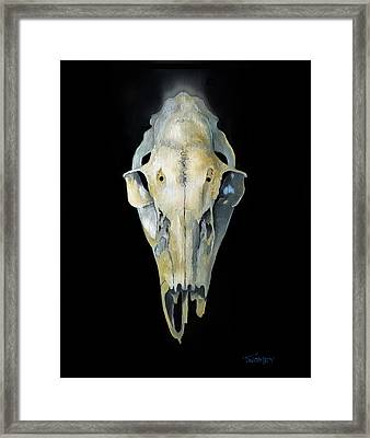 Deer Skull With Aura Framed Print by Catherine Twomey