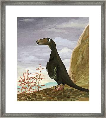 Deinonychus Dinosaur Framed Print by Nemo Ramjet