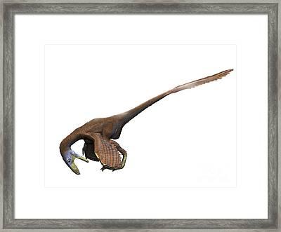 Deinonychus Dinosaur Framed Print by Nobumichi Tamura