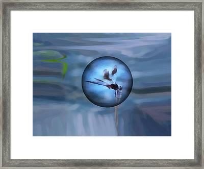Delayed Flight Framed Print by Wendy J St Christopher