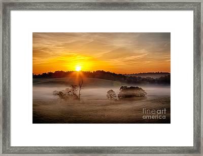 Delicate Dawn Framed Print by Dan Carmichael