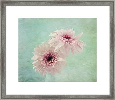 Delicate Pinks Framed Print by Kim Hojnacki