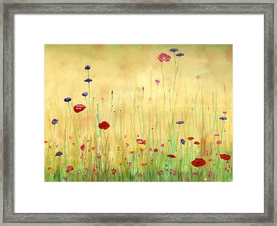 Delicate Poppies Framed Print by Cecilia Brendel