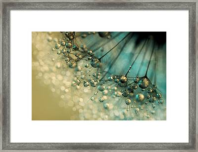 Delicious Dandy Drops Framed Print by Sharon Johnstone