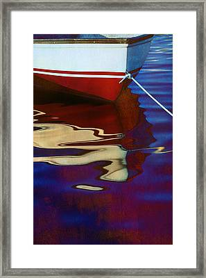Delphin 2 Framed Print by Laura Fasulo