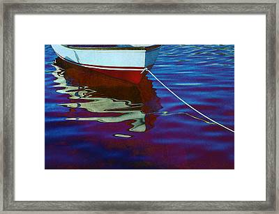 Delphin Framed Print by Laura Fasulo