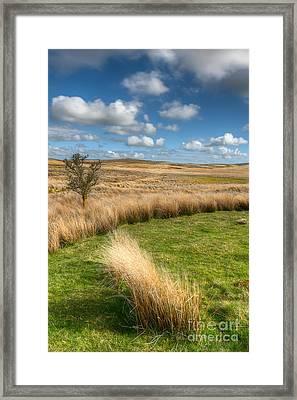 Denbigh Moors Framed Print by Adrian Evans