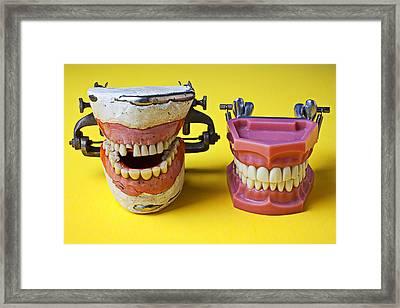 Dental Models Framed Print by Garry Gay