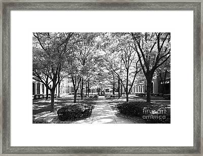 Depaul University Richardson Library Courtyard Framed Print by University Icons