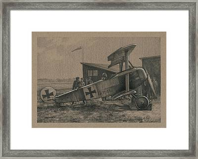 Der Junge Adler Framed Print by Wade Meyers
