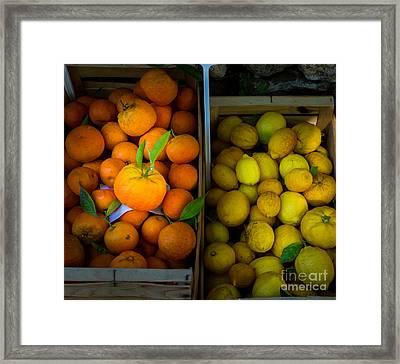 Des Oranges Et Des Citrons Framed Print by Inge Johnsson