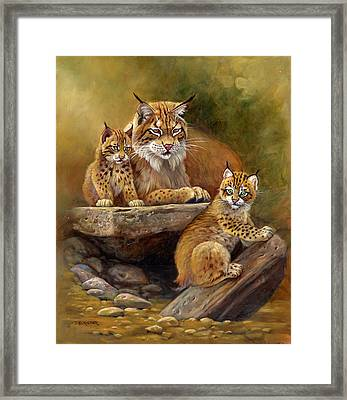 Desert Day Care Framed Print by Gene Dieckhoner