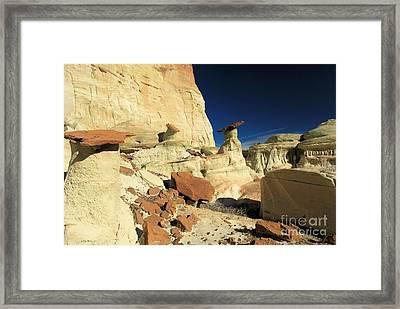 Desert Decorations Framed Print by Adam Jewell