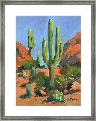 Desert Morning Saguaro Framed Print by Diane McClary