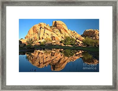Desert Oasis Reflections Framed Print by Adam Jewell