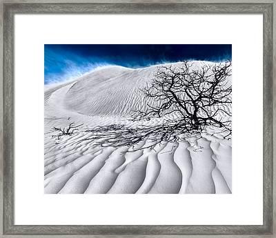 Desert Storm Framed Print by Julian Cook