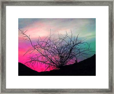 Desert Sunset Framed Print by Terril Heilman