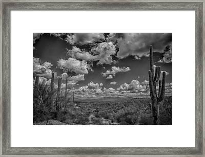 Desert Vista Framed Print by Judi FitzPatrick