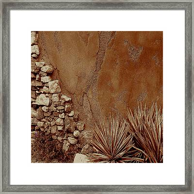 Desert Wall And Garden Framed Print by Sherri  Of Palm Springs