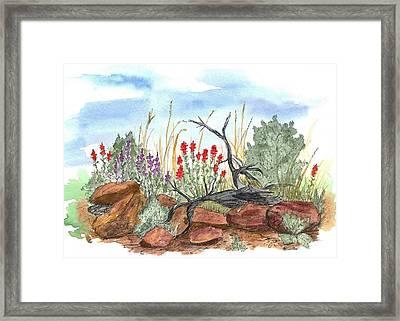 Desert Wildflowers Framed Print by Cathie Richardson