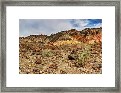 Desert Zen Framed Print by Heidi Smith