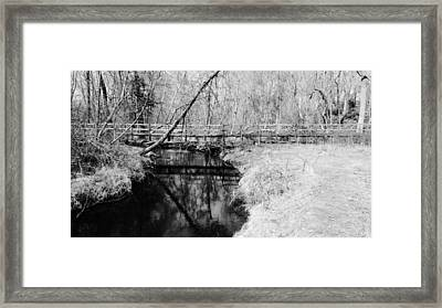 Desolate Framed Print by Michelle Milano