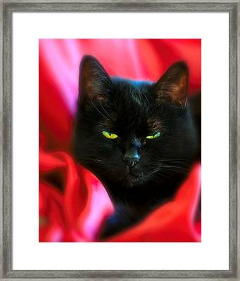 Devil In A Red Dress Framed Print by Bob Orsillo