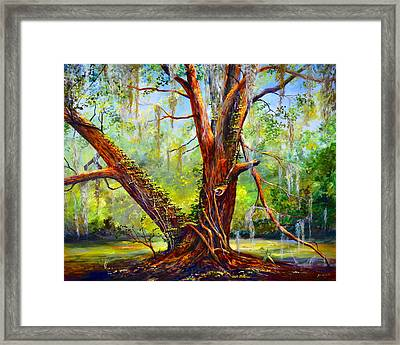 Devine Oak Framed Print by AnnaJo Vahle