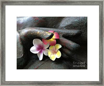 Devotional Framed Print by Cheryl Young