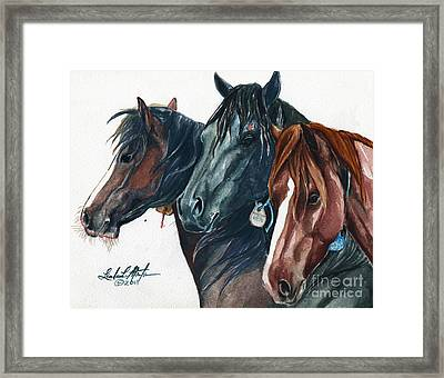 Diamonds In The Rough Framed Print by Linda L Martin