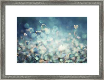 Diamonds Framed Print by Stefan Eisele