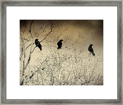 Did You See That Framed Print by Gothicolors Donna Snyder