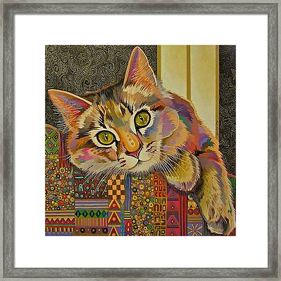Diego Framed Print by Bob Coonts