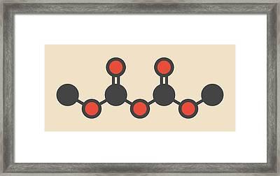 Dimethyl Dicarbonate Molecule Framed Print by Molekuul