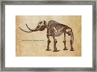 Dinosaur Mastodon Americanus Framed Print by Aged Pixel