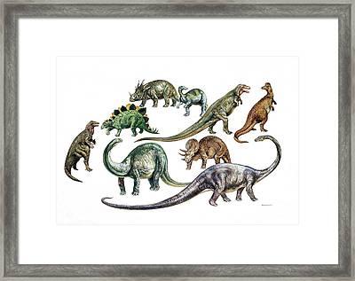 Dinosaurs Framed Print by Deagostini/uig