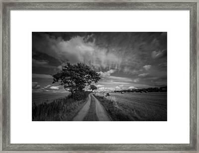 Dirt Path Framed Print by Chris Fletcher