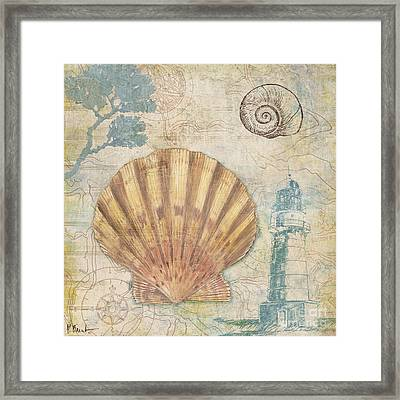 Discovery Shell II Framed Print by Paul Brent