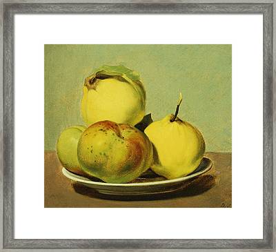 Dish Of Apples And Quinces Framed Print by David Johnson