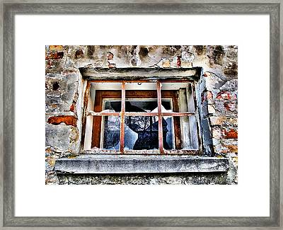 Disrespected Framed Print by Marianna Mills